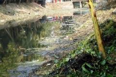 Ichamati-River-Pabna-Bangladesh-Cleaning-on-December-2013-27