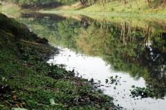 Ichamati-River-Pabna-Bangladesh-Cleaning-on-December-2013-33