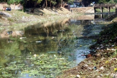 Ichamati-River-Pabna-Bangladesh-Cleaning-on-December-2013-39