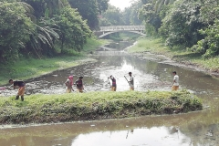 Ichamati-River-Pabna-Bangladesh-Cleaning-on-July-2020-26