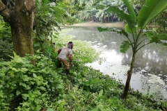 Ichamati-River-Pabna-Bangladesh-Cleaning-on-July-2020-32