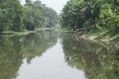 Ichamati-River-Pabna-Bangladesh-Cleaning-on-October-2013-12