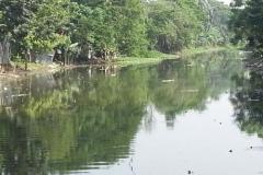 Ichamati-River-Pabna-Bangladesh-Cleaning-on-October-2013-14