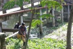 Ichamati-River-Pabna-Bangladesh-Cleaning-on-October-2013-15