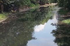 Ichamati-River-Pabna-Bangladesh-Cleaning-on-October-2013-18