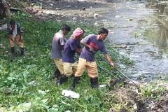 Ichamati-River-Pabna-Bangladesh-Cleaning-on-October-2013-19