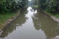 Ichamati-River-Pabna-Bangladesh-Cleaning-on-October-2013-2