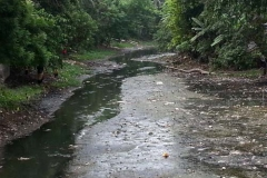 Ichamati-River-Pabna-Bangladesh-Cleaning-on-October-2013-25
