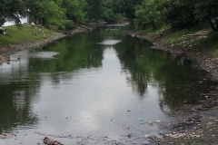 Ichamati-River-Pabna-Bangladesh-Cleaning-on-October-2013-26