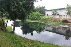 Ichamati-River-Pabna-Bangladesh-Cleaning-on-October-2013-29