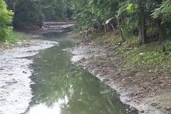 Ichamati-River-Pabna-Bangladesh-Cleaning-on-October-2013-30