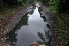 Ichamati-River-Pabna-Bangladesh-Cleaning-on-October-2013-31