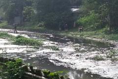 Ichamati-River-Pabna-Bangladesh-Cleaning-on-October-2013-34