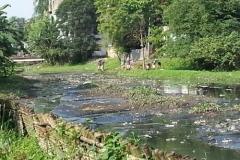Ichamati-River-Pabna-Bangladesh-Cleaning-on-October-2013-36