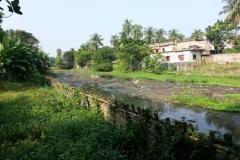 Ichamati-River-Pabna-Bangladesh-Cleaning-on-October-2013-37