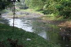 Ichamati-River-Pabna-Bangladesh-Cleaning-on-October-2013-39