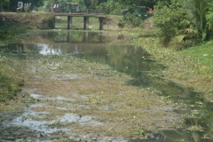 Ichamati-River-Pabna-Bangladesh-Cleaning-on-October-2013-40