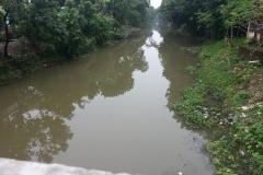 Ichamati-River-Pabna-Bangladesh-Cleaning-on-October-2013-5