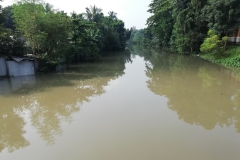 Ichamati-River-Pabna-Bangladesh-Cleaning-on-October-2019-11