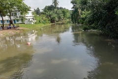 Ichamati-River-Pabna-Bangladesh-Cleaning-on-October-2019-12