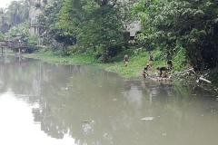 Ichamati-River-Pabna-Bangladesh-Cleaning-on-October-2019-3
