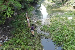 Ichamati-River-Pabna-Bangladesh-Cleaning-on-October-2019-31