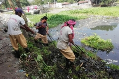 Ichamati-River-Pabna-Bangladesh-Cleaning-on-October-2019-41