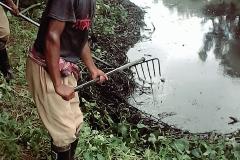 Ichamati-River-Pabna-Bangladesh-Cleaning-on-September-2019-14