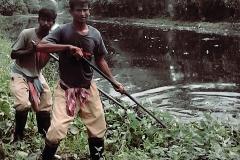 Ichamati-River-Pabna-Bangladesh-Cleaning-on-September-2019-15