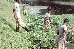 Ichamati-River-Pabna-Bangladesh-Cleaning-on-September-2019-21