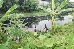 Ichamati-River-Pabna-Bangladesh-Cleaning-on-September-2019-24