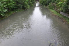 Ichamati-River-Pabna-Bangladesh-Cleaning-on-September-2019-3