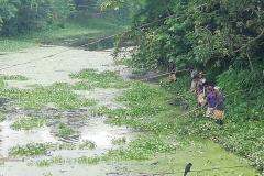 Ichamati-River-Pabna-Bangladesh-Cleaning-on-September-2019-36