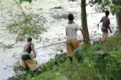 Ichamati-River-Pabna-Bangladesh-Cleaning-on-September-2019-39