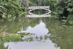 Ichamati-River-Pabna-Bangladesh-Cleaning-on-September-2019-5