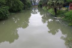 Ichamati-River-Pabna-Bangladesh-Cleaning-on-September-2019-7