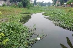 Ichamati-River-Pabna-Bangladesh-on-August-2021-1