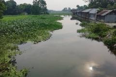 Ichamati-River-Pabna-Bangladesh-on-August-2021-10