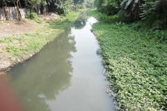 Ichamati-River-Pabna-Bangladesh-on-August-2021-11