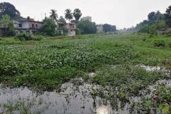 Ichamati-River-Pabna-Bangladesh-on-August-2021-17