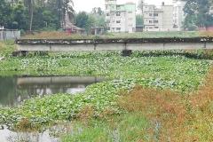 Ichamati-River-Pabna-Bangladesh-on-August-2021-19