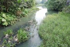 Ichamati-River-Pabna-Bangladesh-on-August-2021-23