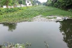 Ichamati-River-Pabna-Bangladesh-on-August-2021-31