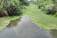 Ichamati-River-Pabna-Bangladesh-on-August-2021-33