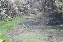 Ichamati-River-Pabna-Bangladeh-as-of-February-2021-1