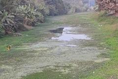 Ichamati-River-Pabna-Bangladeh-as-of-February-2021-14