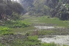 Ichamati-River-Pabna-Bangladeh-as-of-February-2021-16