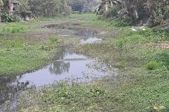 Ichamati-River-Pabna-Bangladeh-as-of-February-2021-17
