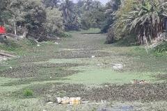 Ichamati-River-Pabna-Bangladeh-as-of-February-2021-23