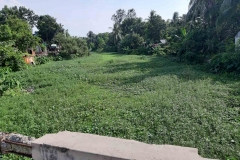 Ichamati-River-Pabna-Bangladesh-as-of-July-2020-10